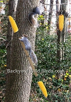 Squirrel Corn Spinner