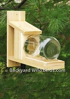 Squirrel Peanut Feeder Jar