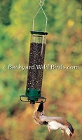 Squirrel Spinner Bird Feeder