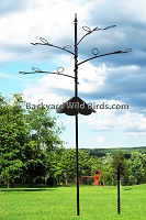 Bird Feeder Pole Tree