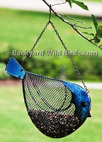 Sunflower Metal Blue Bird Feeder