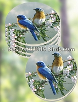 Bluebird Coaster Set