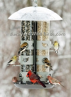 Triple Tube 2 in 1 Bird feeder