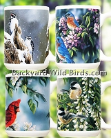 Wild Bird Coffee Mugs Choice Set