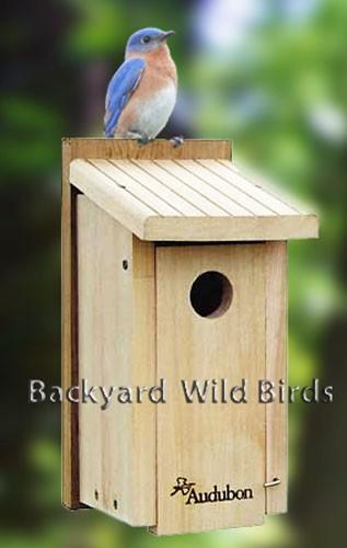 Audubon Bird House At Backyard Wild Birds