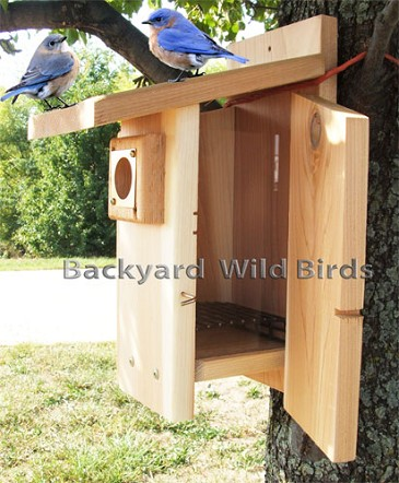 All Cedar Bluebird Birdhouse