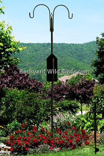 Squirrel Proof Bird Feeder S Pole