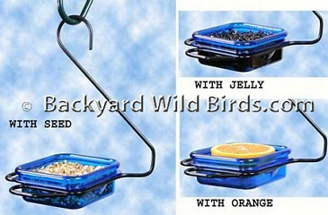 Bluebird Mealworm Hanging Feeder