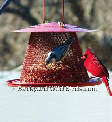 Cardinal Metal Bird Feeder