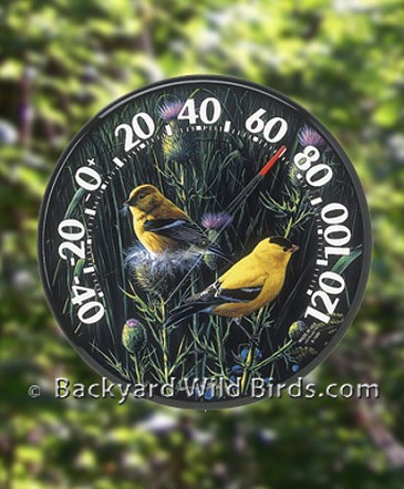 Goldfinch Outdoor Thermometer