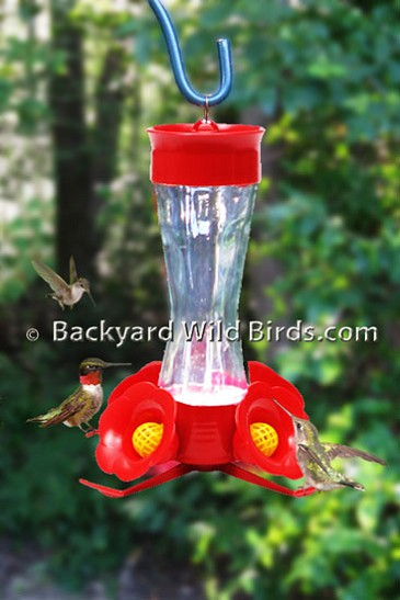 Popular Hummingbird Feeder