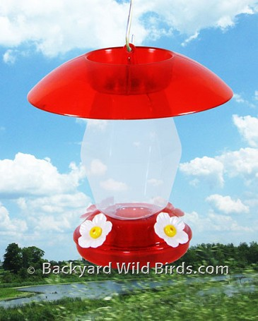 Hummingbird Feeder With Dome
