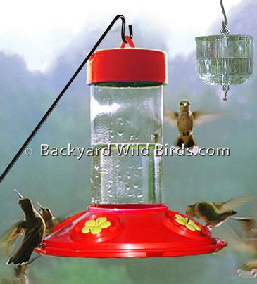 Pest Free Hummingbird Feeder
