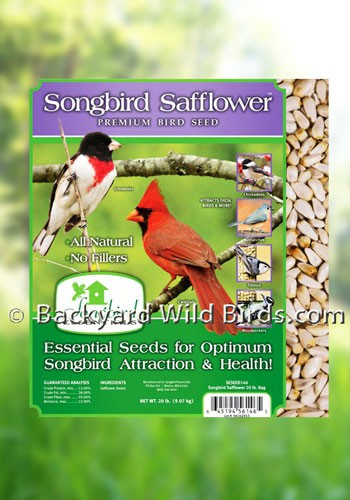Safflower Bird Seed