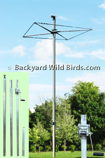 Tall Bird Pole Rack System At Backyard Wild Birds
