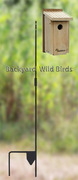 Bluebird Birdhouse Pole