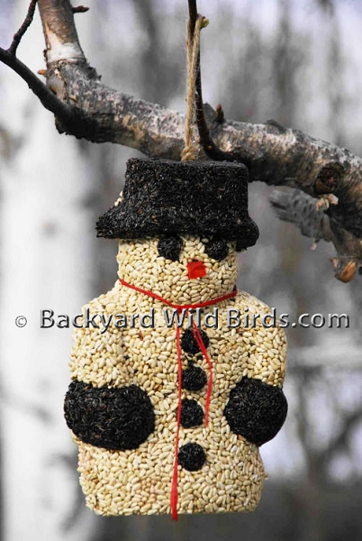 Snow Man Bird Seed Wreath