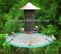 Bird Seed Catcher Large