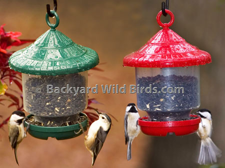 Clingers ly Bird Feeders