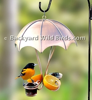 Copper Oriole Bird Feeder