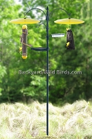 Goldfinch Bird Feeder Pole Station