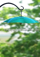 Metal Bird Feeder Dome