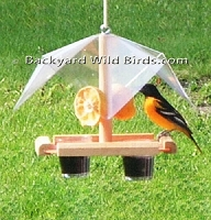 Oriole Bird Feeder Buffet