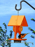 Oriole Fruit Jelly Bird Feeder