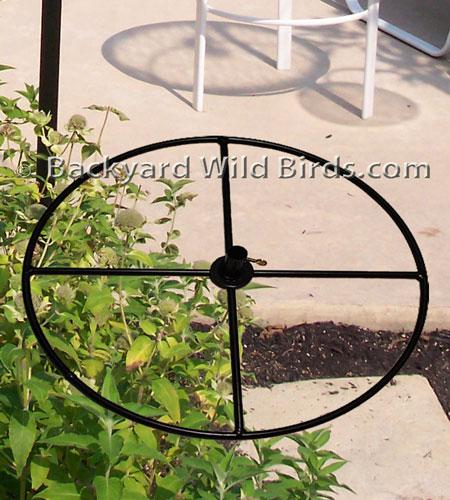 Patio Bird Pole Base at Backyard Wild Birds