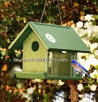 Recycled Mealworm Feeder