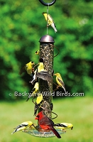 Spiral Sunflower Bird Feeder Tray