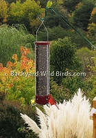 Squirrel Dipper Bird Feeder