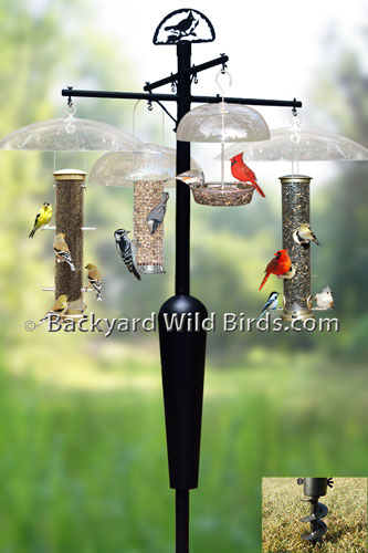 Bird Feeder Pole with Bird feeders