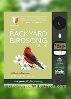 Backyard Birds Birdsong