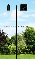 Bird Pole Adapter Mounts