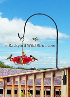 Deck Hummingbird Feeder Pole