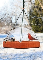 Platform Covered Bird Feeder