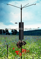 Raccoon Proof Bird Pole Trio