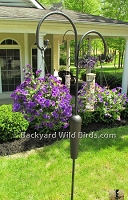 Shepherd Hook Plant and Bird Pole