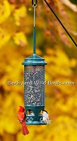 Squirrel Blocker Sunflower Bird Feeder