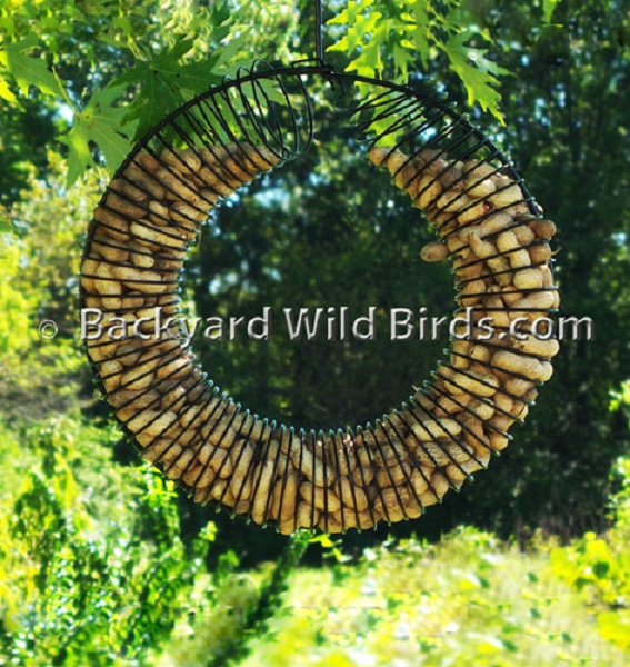 Whole Peanut Feeder Wreath