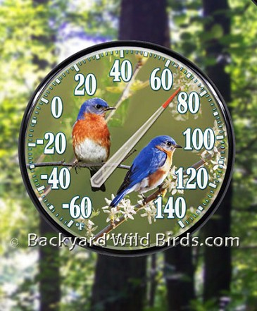 Bluebird Outdoor Thermometer