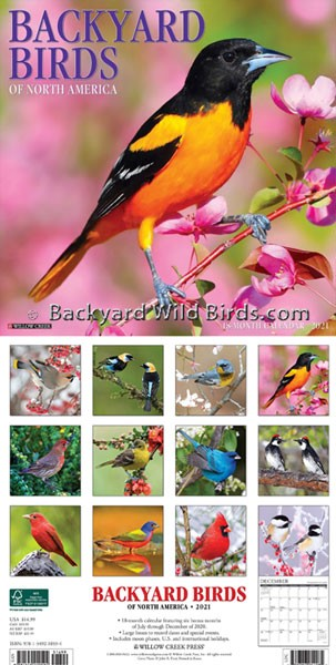 Backyard Birds 2021 Calendar