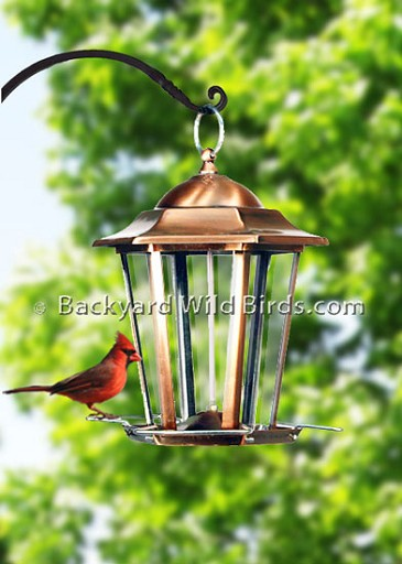 Copper Lantern Bird Feeder