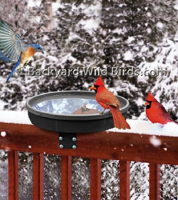 Heated Deck Bird Bath 3 Mounts