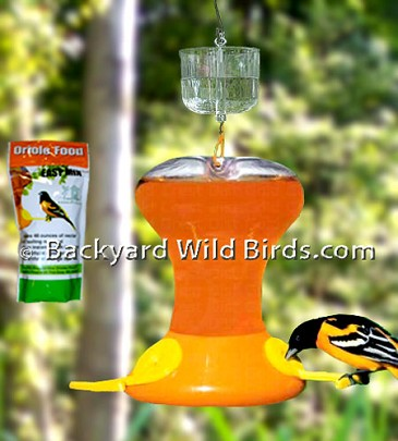 Oriole Bird Feeder Solution