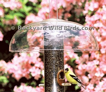 Tube Bird Feeder Baffle